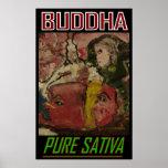 BUDDHA PURE SATIVA POSTER