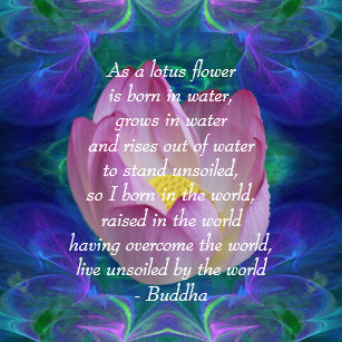 Lotus Flower Quote Gifts On Zazzle