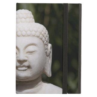 Buddha Statue iPad Air Covers