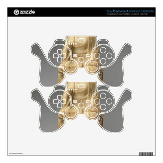 Buddha - Tang dynasty (618–907) Skins For PS3 Controllers