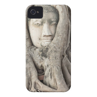 Buddha's head in Bodhi tree, Ayutthaya Case-Mate iPhone 4 Case