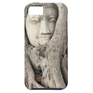 Buddha's head in Bodhi tree, Ayutthaya iPhone SE/5/5s Case