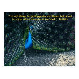 Buddha's Quote Postcard