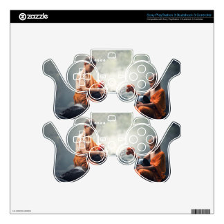 Buddhist Monks Washing Bowls PS3 Controller Skin