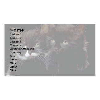 Buddies Double-Sided Standard Business Cards (Pack Of 100)