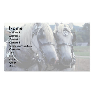 Buddies, horse team Double-Sided standard business cards (Pack of 100)