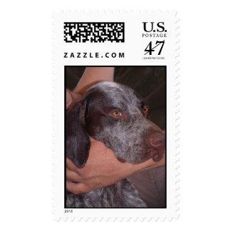 Buddies Postage Stamp