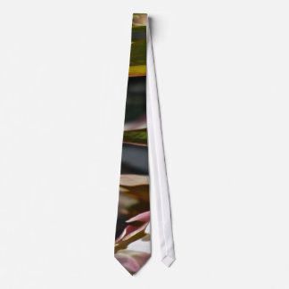 Budding Anemone Abstract Tie