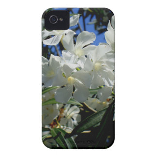 Budding Blossoms iPhone 4 Case-Mate Case