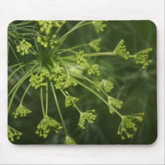 Budding Dill Head Mouse Pad