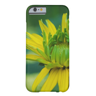 Budding False Sunflower Barely There iPhone 6 Case