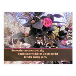 Budding Friendship Blooms with TLC Postcard