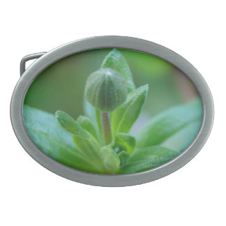 Budding into Spring - Belt Buckle