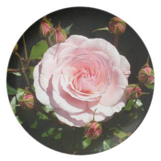 Budding Pink Rose Buds Plate