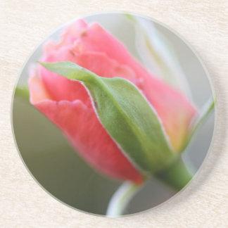 Budding Pink Rose Drink Coaster