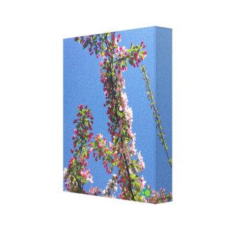 budding spring canvas print