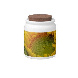 Budding Sunflower Candy Jars