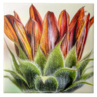 Budding Sunflower Ceramic Tile