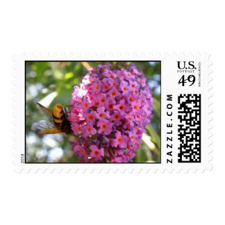 Buddleia and Hornet US Postage Stamp