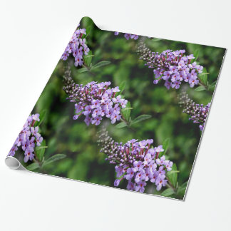 Buddleja Gift Wrapping Paper