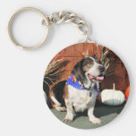 Buddy Beagle Basset Hybrid Photo-01 Keychain