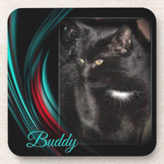 Buddy Coaster