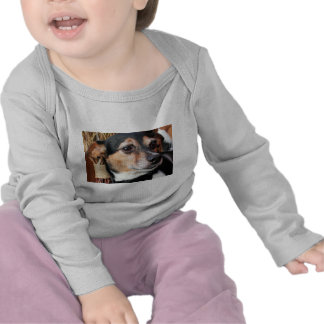 Buddy - Fox Terrier Photo-9 T Shirt