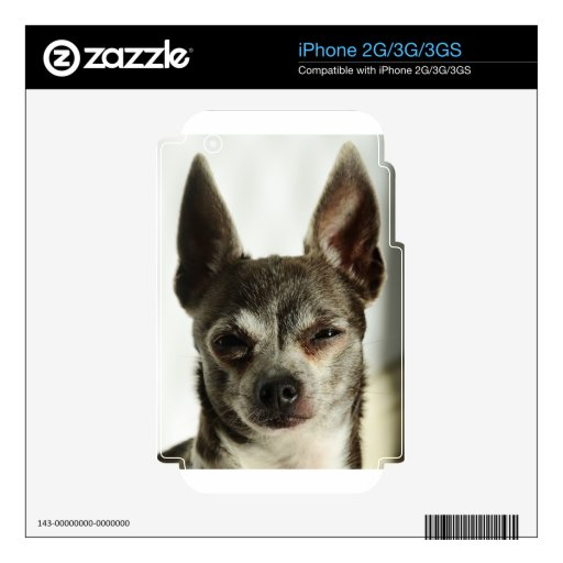 Buddy Skins For iPhone 2G