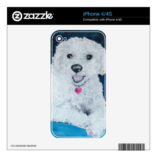 Buddy the Bichon Frise Decals For iPhone 4S