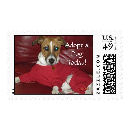 BuddyJokerXmas PJs, Adopt a DogToday! Postage