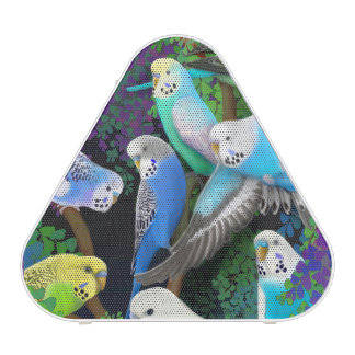 Budgerigar Parakeets in Ferns Pieladium Speaker