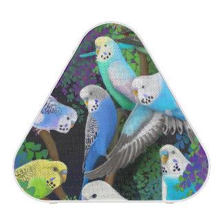 Budgerigar Parakeets in Ferns Pieladium Speaker