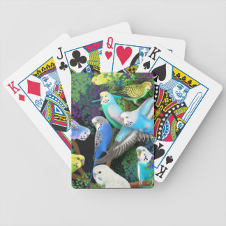 Budgerigar Parrots in Ferns Playing Cards