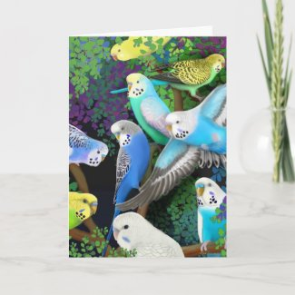 Budgerigars and Ferns Card card