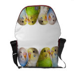 I'm A Budgie Mommy Realistic Painting Messenger Bag