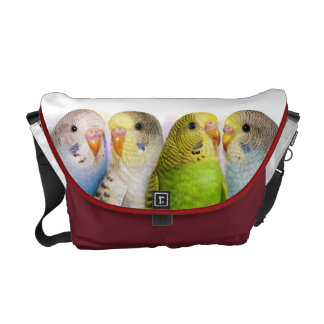 Budgerigars realistic painting courier bags