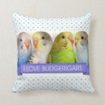 I Love Budgerigars Realistic Painting Pillow