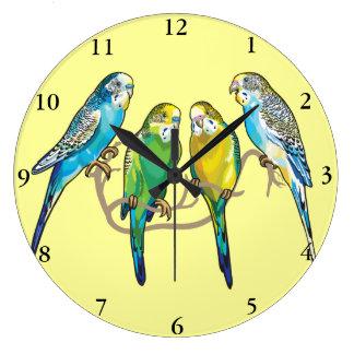 budgerigars reloj redondo grande
