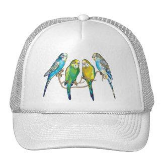 budgerigars trucker hat