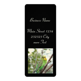 budgie 4x9.25 paper invitation card