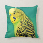 Budgie/almohada de tiro del Parakeet Cojines