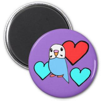 Budgie azul con los corazones imán redondo 5 cm