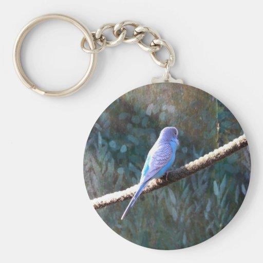 Budgie azul llavero redondo tipo pin