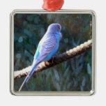 Budgie azul ornamentos de navidad
