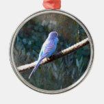 Budgie azul ornaments para arbol de navidad