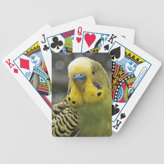 Budgie Bird Bicycle Playing Cards
