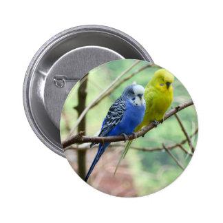 Budgie Bird 2 Inch Round Button