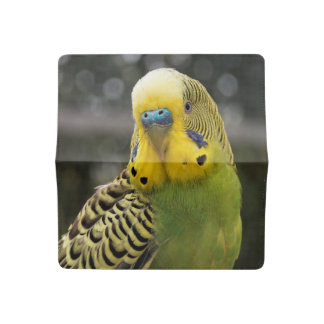 Budgie Bird Checkbook Cover