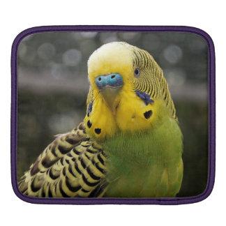 Budgie Bird iPad Sleeve