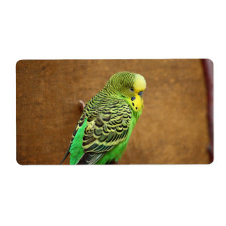 Budgie Bird Label